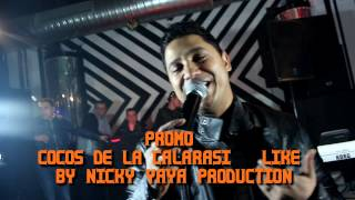 Promo Cocos de la Calarasi - Like (Video)