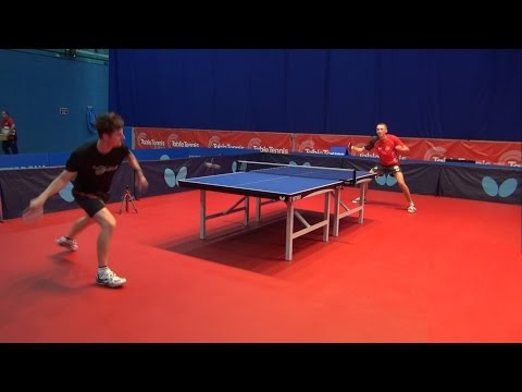 Butterfly Viscaria OFF Table Tennis Blade