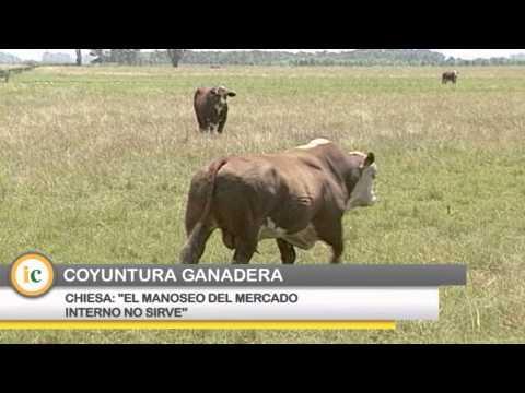 Mercado de carnes: el manoseo no sirve