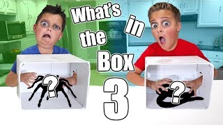 WHAT'S IN THE BOX CHALLENGE 3!