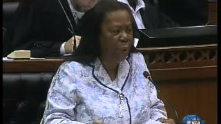 Gupta Debate: Opposition parties are afraid of the truth -- Pandor view on youtube.com tube online.