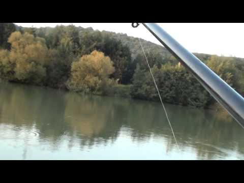 Pescuit oblete cu muste artificiale la barajul Bascov 19-08-2014 partea 3-a