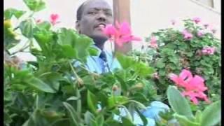 """Mulugeta Habtemichael - Alnafekushimwey """"አልናፈኩሽምወይ"""" (Amharic)"""