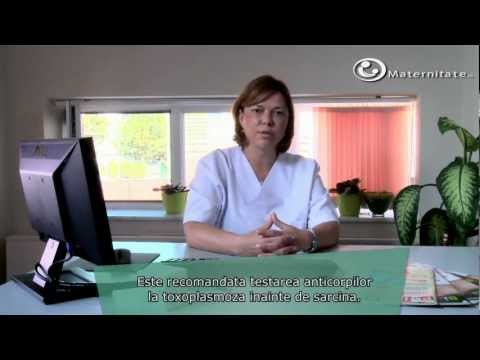 Toxoplasmoza in timpul sarcinii