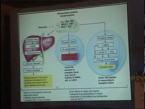 Does Metformin prevent cancer - Dr Dharmarajan