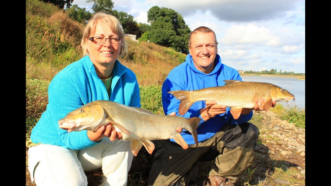 Barbel Fishing With Cheese