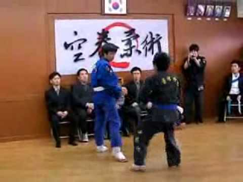 2No, Gongkwon Yusul friendship match May 2009(Korea jiu jitsu Hapkido)