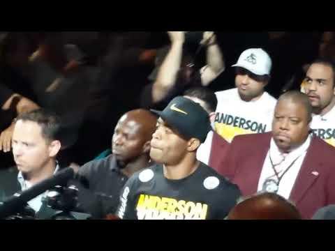 UFC 162 Anderson Silva entrance