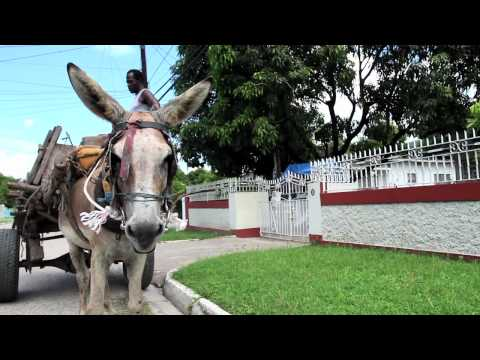 Sweet Jamaica - Mr. Vegas, Shaggy, Josey Wales