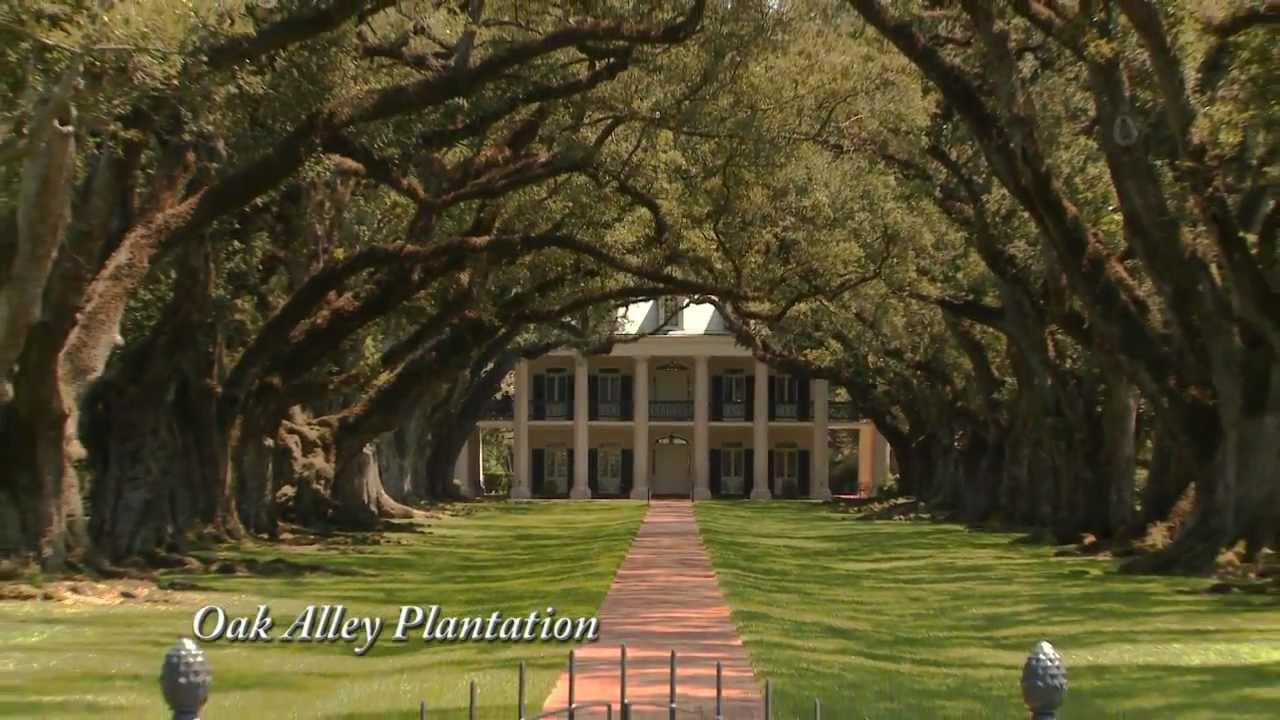 Gray Line Oak Alley Plantation Tour
