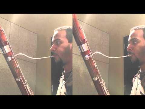 Super Mario World - Castle Theme (Bassoons cover)
