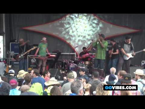 "Bad Rabbits Perform ""Girl I'm Like Damn"" at Gathering of the Vibes Music Festival 2012"