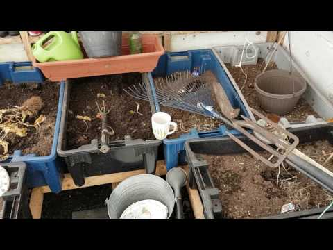 Jardinage au potager 2107