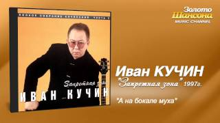 Иван Кучин - А на бокале муха