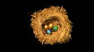 Feliz Domingo de Pascua - Compartela