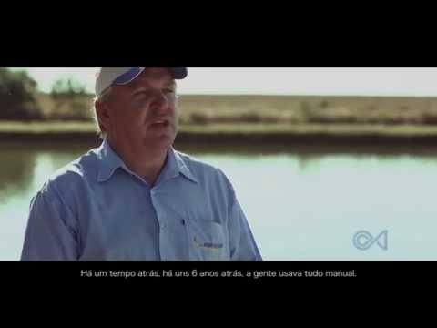 Piscicultura Comercial - Canal do Piscicultor.com