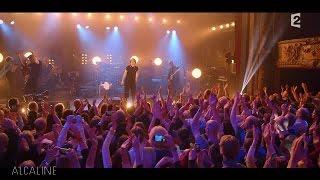 Alcaline, le Concert : Texas - Inner Smile en live