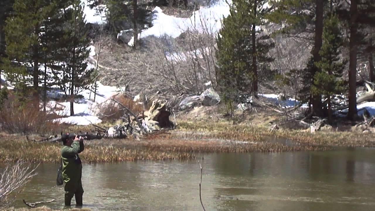 Fishing weir pond bishop creek canyon youtube for Bishop ca fishing