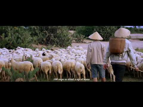 Làm Cha (Shortfilm) - Hoài Lâm [Chất Lượng 4K]