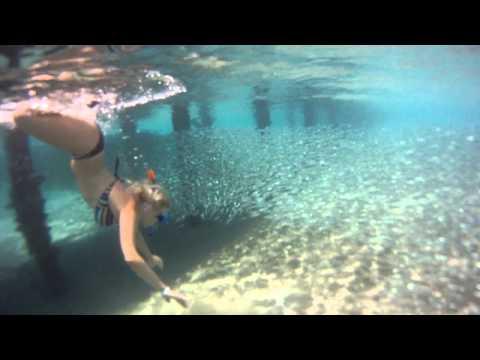 Египет. Шарм-Эль-Шейх в 2011 (ролик №1) : египет шарм эль шейх