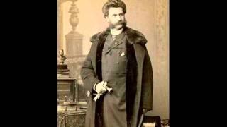 Strauss Vals Cuentos De Los Bosques De Viena