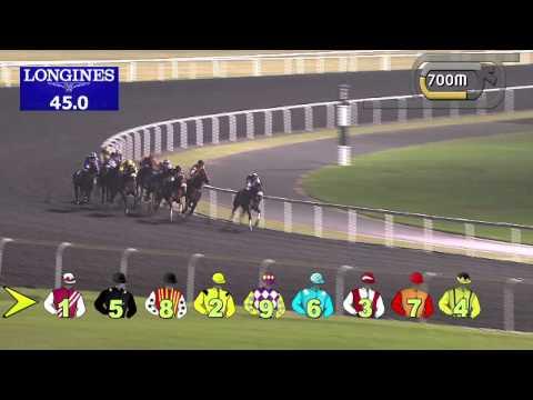 Vidéo de la course PMU DUBAL CASTHOUSE TROPHY