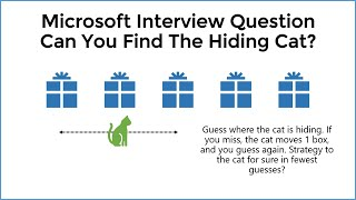 Can You Solve The Hiding Cat Puzzle? HARD Logic Riddle