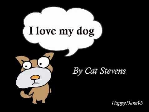 Lyrics Cat Stevens I Love My Dog
