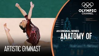 Anatomy of a Gymnast: Are They The Most Flexible Athletes on Earth?