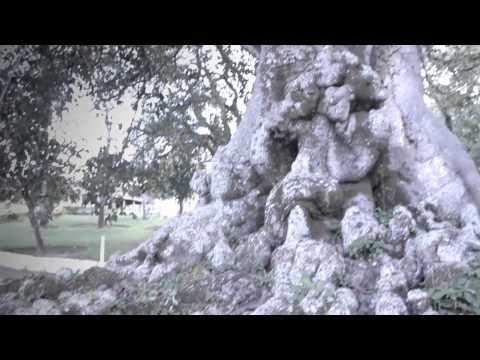 Green Heads, Mochilong - Episódio 4: Itirapina