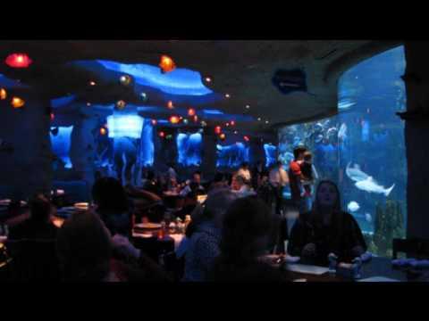 Opry Mills Aquarium Restaurant - YouTube
