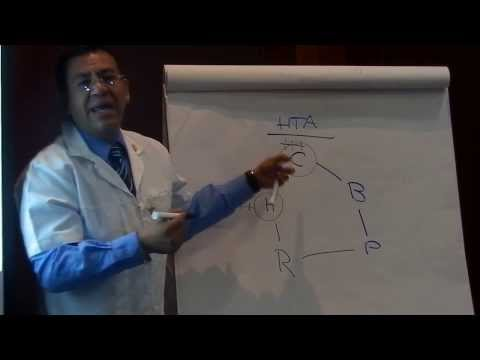 Auriculoterapia Puntos para Hipertension Arterial