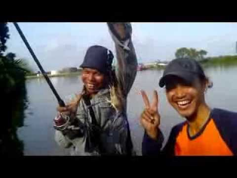 Fishing monster freshwater shrimp at Muara Kembang | new