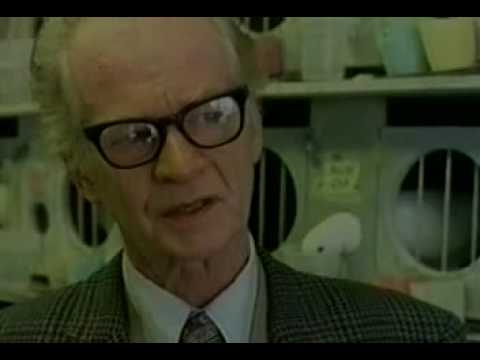 b f skinner philosophy of education The theory of bf skinner is based upon the idea that learning is a function of change in overt behavior.