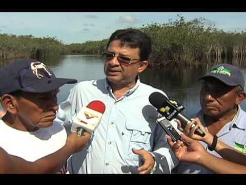 LIBERACIÓN DE TORTUGA ARRAU