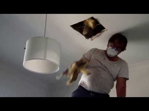Plastering Water Damaged Dry Wall Ceiling Repair Glen Iris