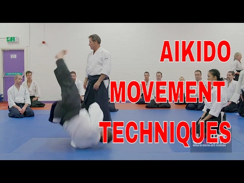 AIKIDO Movement Techniques Christian Tissier pt6