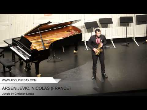 Dinant 2014 – ARSENIJEVIC, Nicolas (Jungle by Christian Lauba)