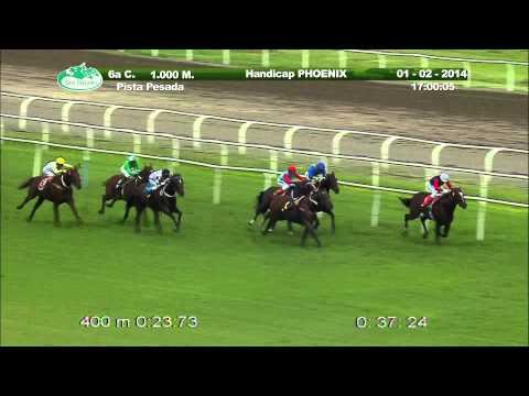 Vidéo de la course PMU HANDICAP PHOENIX