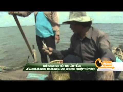 Giới khoa học lên tiếng về ảnh hưởng môi trường lưu vực sông Mê Kông