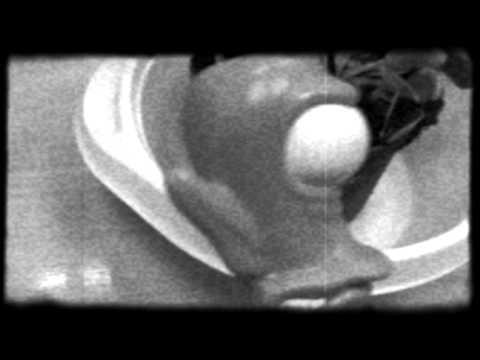 Обзор Dionaea muscipula