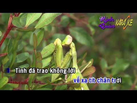 Karaoke - Lien khuc Tuan Vu (những ngày xưa thân ái)