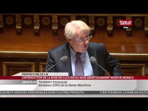 En Séance - Loi: Interdiction de la mise en culture du maïs génétiquement modifié MON810