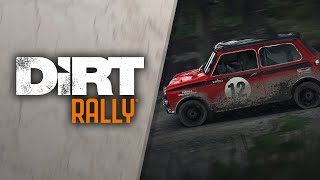 DiRT Rally - Flying Finland