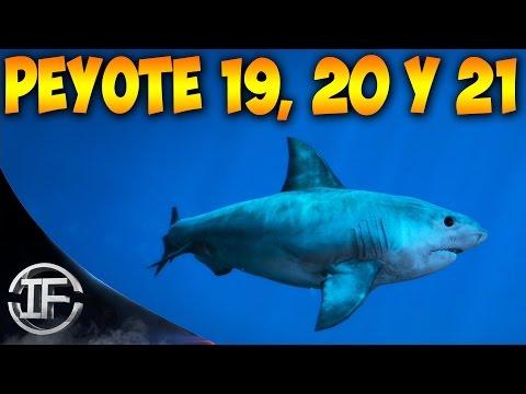 GTA V PS4 - Como Ser un Tiburón y Volar con Ave Raro - Peyote 19, 20 Y 21 de 27 - Easter Egg GTA 5