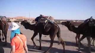 الجنوب المغربي بأعين يابانية