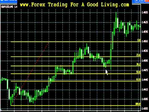 Forex trading news mt5