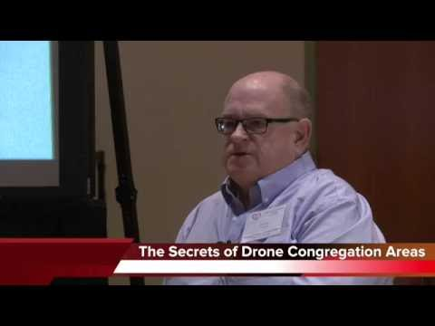 Lawrence Connor: Secrets of Drone Congregation Areas