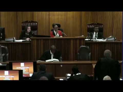 Oscar Pistorius Trial: Thursday 3 July 2014, Session 4