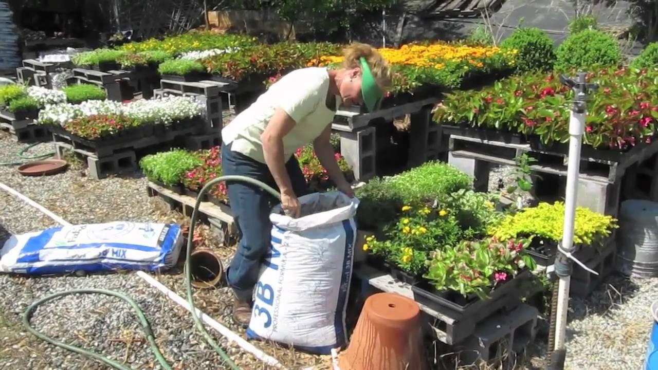 Preparing potting soil for container garden youtube - Best soil for container gardening ...